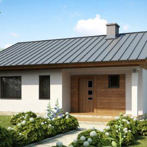 Фото 26 - Z78 - Аккуратный небольшой одноэтажный дом простой конструкции с кухней со стороны сада.