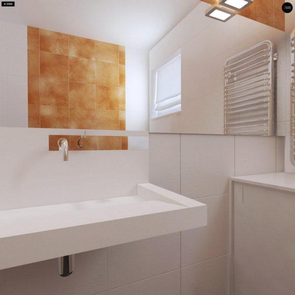 Фото 21 - Z204 - Проект функционального одноэтажного дома Ночная зона во фронтальной части, кухня со стороны сада.